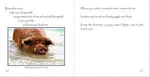 Wilbur the Beach Pig Heidi Fagerberg
